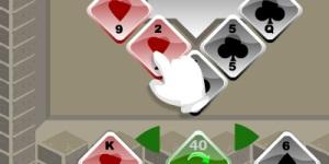 Card Raidert